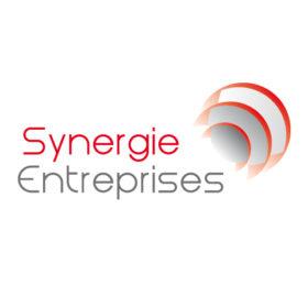 Synergie Entreprises